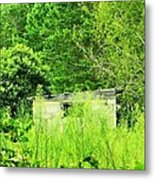 Natures Green Metal Print