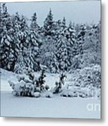 Natures Handywork - Snowstorm - Snow - Trees Metal Print