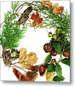 Nature's Natural Green Wreath Metal Print