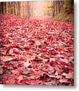 Nature's Red Carpet Revisited Metal Print