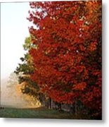 Nature's Red Highlights Metal Print
