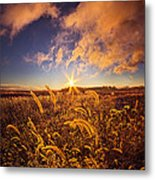 Nature's Romm With A View Metal Print