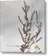 Natures Snow Coat Metal Print