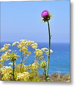 Natures Song Metal Print by Lynn Bauer