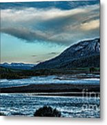 Nature's Touch Metal Print