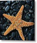 Nautical - Starfish On Black Rocks Metal Print