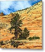 Navajo Sandstone Metal Print