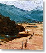 Near La Veta Metal Print