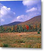 Near Peacham Vermont Metal Print