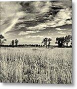 Nebraska Prairie One In Black And White Metal Print