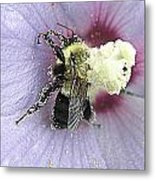 Nectar Overload  Metal Print