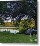 Need To Float 20140718 Metal Print