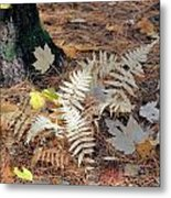 Needles And Leaves Metal Print