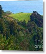 Nepenthe View At Big Sur In California Metal Print