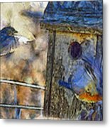 Nest Building Time Metal Print