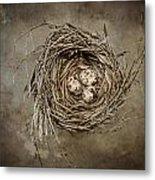 Nest Eggs Metal Print