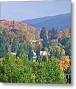 Nesting In The Hills Metal Print
