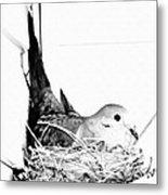 Nesting Mama Metal Print
