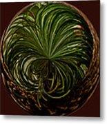 Nesting Pine Orb Metal Print