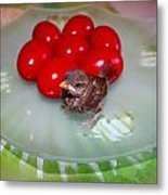 Nestling And Red Eggs Metal Print