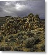 Nevada Desert Skies Metal Print