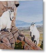 Nevada Mountain Goats Metal Print