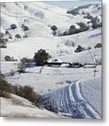 Never Snows In California Metal Print