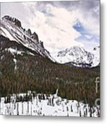 Never Summer Wilderness Area Panorama Metal Print