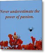 Never Underestimate The Power Of Passion Metal Print