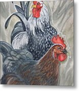 New Chick In Town Metal Print