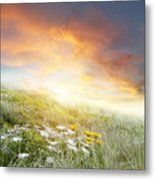 New Day Dawn Metal Print