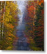 New Hampshire Back Road Metal Print