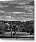 New Jersey Landscape With Horses Metal Print