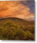 New Mexico Magic Metal Print