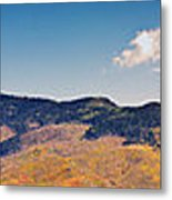 New Mexico Panorama Metal Print