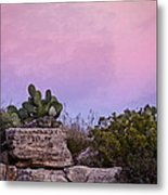 New Mexico Sunset With Cacti Metal Print