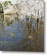 New Orleans - Swamp Boat Ride - 1212104 Metal Print