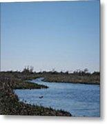 New Orleans - Swamp Boat Ride - 1212107 Metal Print