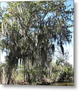 New Orleans - Swamp Boat Ride - 1212129 Metal Print