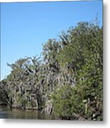 New Orleans - Swamp Boat Ride - 1212130 Metal Print