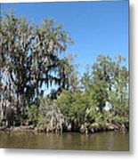 New Orleans - Swamp Boat Ride - 1212132 Metal Print