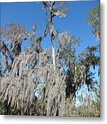 New Orleans - Swamp Boat Ride - 1212138 Metal Print