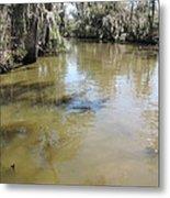 New Orleans - Swamp Boat Ride - 1212143 Metal Print