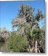 New Orleans - Swamp Boat Ride - 1212144 Metal Print