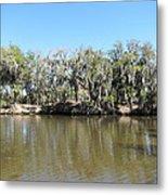 New Orleans - Swamp Boat Ride - 1212150 Metal Print