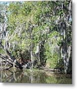 New Orleans - Swamp Boat Ride - 121231 Metal Print