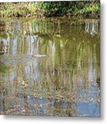 New Orleans - Swamp Boat Ride - 121250 Metal Print