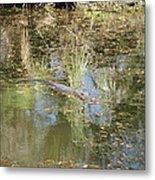 New Orleans - Swamp Boat Ride - 121252 Metal Print