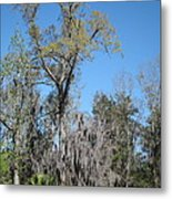 New Orleans - Swamp Boat Ride - 121265 Metal Print