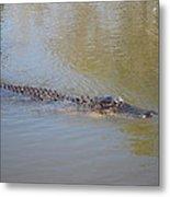 New Orleans - Swamp Boat Ride - 121281 Metal Print